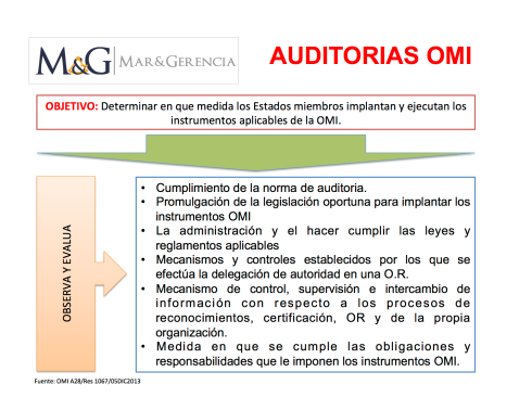 auditoria-omi-1